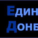 Единство Донбасса, общественная организация